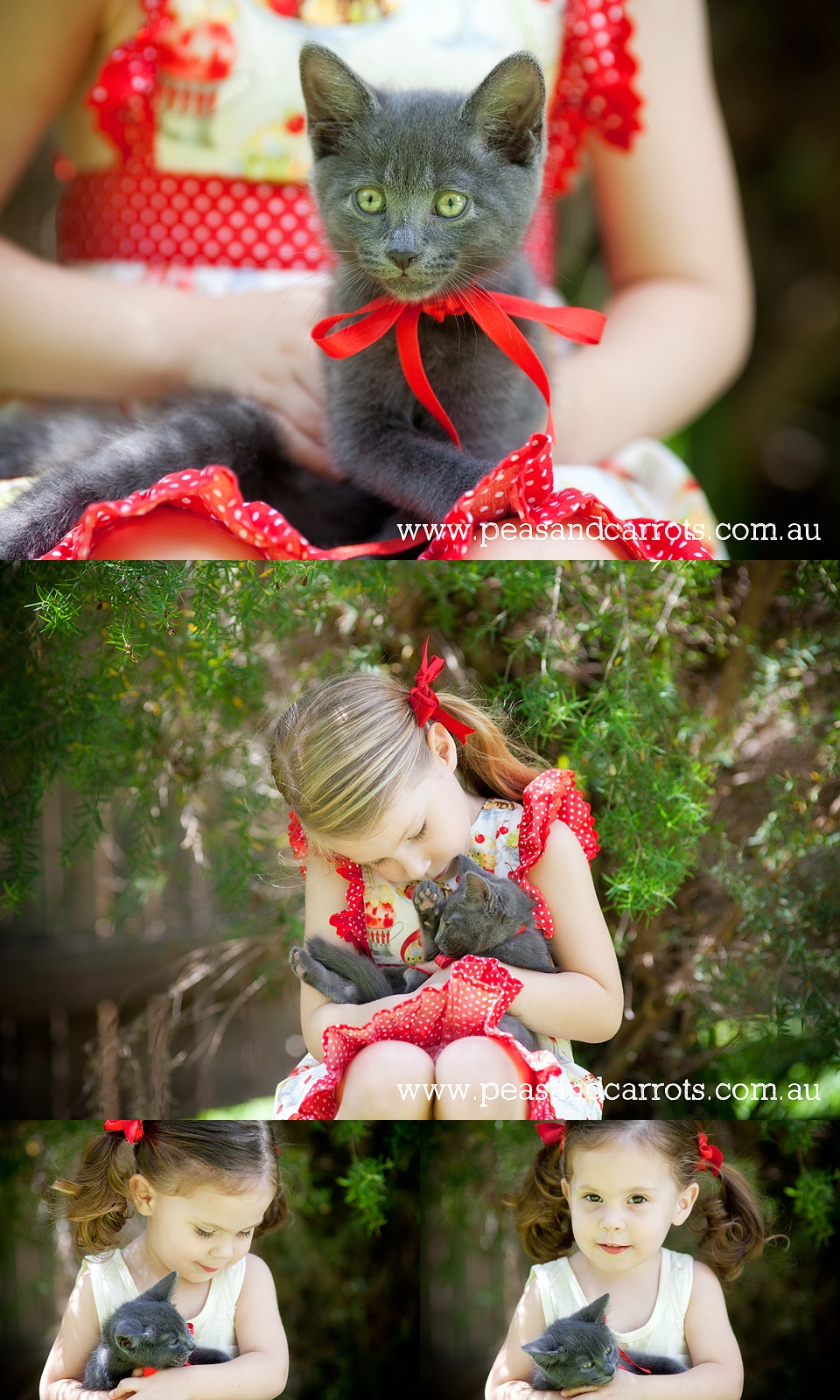 Brisbane Childrens Portrait Photography, Abby and Emily with their new baby kitten named Mr Pink in the backyard at their home in Wavell Heights.  Natural images of children and animals.  Brisbane Child Photographer Nikki Joyner, capturing whimsical and u
