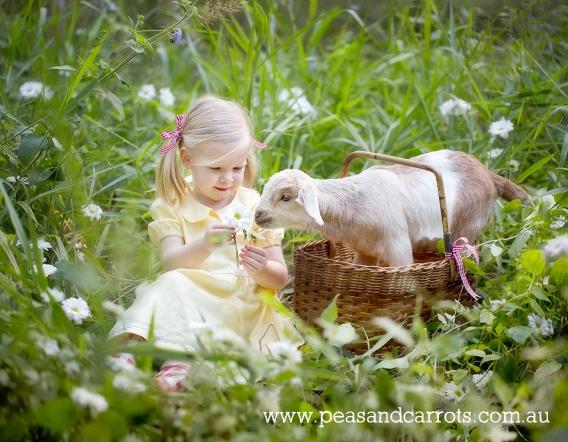 Brisbane Baby; Children & Family Portrait Photography ~ Peas & Carrots Photography.; Award winning children