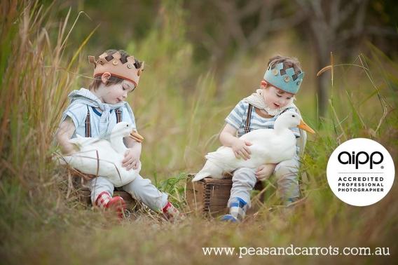 brisbane-childrens-photographer-baby-animals-aipp-accredited-dayboro-samford-locations